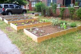 front yard vegetable garden designs t8ls com