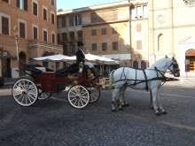 carrozze antiche carrozza accessori vari per animali in puglia kijiji annunci