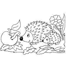 Dessins Gratuits à Colorier  Coloriage Animaux Foret à imprimer