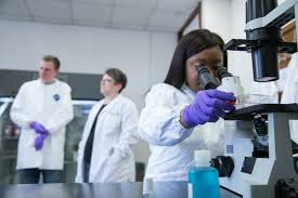 new online course in biomedical research lab techniques for msu