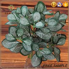 ornamental foliage plants ornamental foliage plants suppliers and
