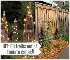 have mercy diy tomato cage trellises