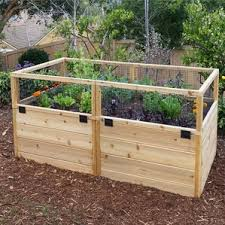 What Type Of Wood For Raised Garden - raised garden beds u0026 elevated planters you u0027ll love wayfair
