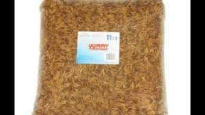 11 lbs dried mealworms bulk treats for backyard chickens and wild