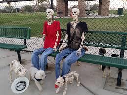 halloween dog skeleton poseable skeleton melody u0027s haunted halloween