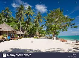 bungalow hotel palms on the beach ko hai or koh ngai island