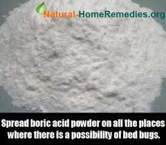 boric acid for bed bugs boric acid bed bugs 28 images 8 effective home remedies for