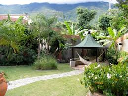 pretty palm trees for tropical landscape ideas with simple walkway