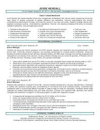 project management resume pdf credit manager resume u2013 lidazayiflama info