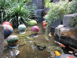 stylish ideas koi ponds exquisite how to build a koi pond crafts