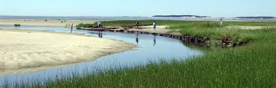 The Marsh Restaurant Cape Cod - hiking and biking trails cape cod online