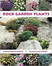 Rock Garden Plants Uk Rock Garden Plants A Colour Encyclopedia Co Uk