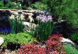 Colorado Botanical Gardens A Colorado Botanic Garden List