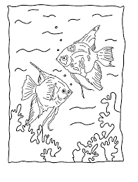 free printable fish coloring pages kids