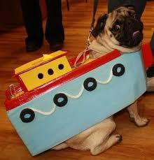 Pug Halloween Costumes Sale 231 Pugs Costumes Images Animals Funny