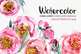 Watercolor Flowers - watercolor flowers peonies png illustrations creative market