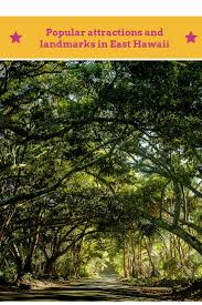 Kohala Pumpkin Patch 2014 by 899 Best Majestic Trees Images On Pinterest Nature Landscapes