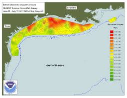 Map Gulf Of Mexico by Gulf Of Mexico Dead Zone Reaches Record Size Article Eesi