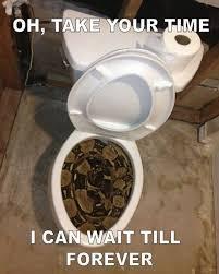 Meme Toilet - snake also wanna pee russian memes
