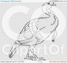 turkey drawings thanksgiving cartoon of a retro vintage black and white gobbler thanksgiving
