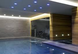 basement pool luxury home design cool on basement pool home design