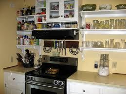 Kitchen Cabinet Replacement Shelves Kitchen Kitchen Cabinet Shelves Inside Striking Awesome Kitchen
