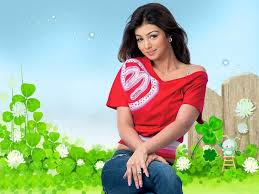 Seeking Hd 11 Best Ayesha Takia Hd Wallpapers Images On Wallpaper