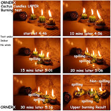 amazon com ornerx decorative cactus candles tea light candles 6