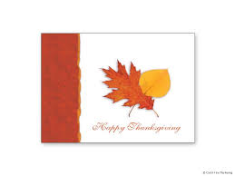 thanksgiving cards catch marketing
