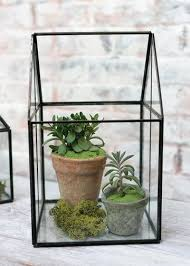 diy terrariums live succulents floral decorating at afloral
