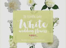 wedding flowers names wedding flower list new white wedding flowers guide types of white