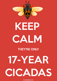 Make Keep Calm Memes - they make this sound like this is not a big deal but it is