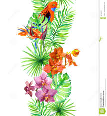 Exotic Colors by Tropical Leaves Exotic Parrot Bird Orchid Flowers Repeating
