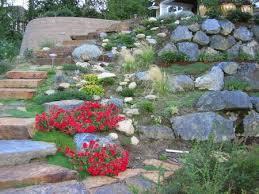 giardini rocciosi in ombra come realizzare un giardino roccioso giardinaggio piante e fiori