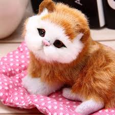 aliexpress com buy pelucia animais cat plush kittens plush