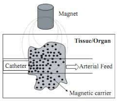 magnetic nanoparticles preparation physical properties and