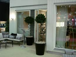 Home Design Shows London by Laurus Nobilis Bay Tree Bay Laurel At Ikea House Ideal Home