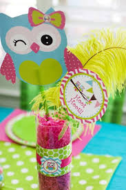 owl baby girl shower decorations owl baby shower decorations for whoooooo s a baby baby