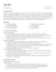 resume writing chicago resume templates international finance director professional resume nyc