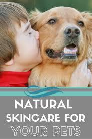 banana joe affenpinscher pedigree 46 best peekapoo breed images on pinterest puppies doggies and