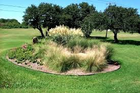 landscaping with ornamental grasses guide with circular beds
