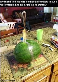 Watermelon Meme - funny watermelon meme humor funny lol funny house pinterest