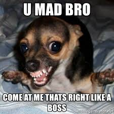 Come At Me Meme - u mad bro come at me thats right like a boss angry chihuahua