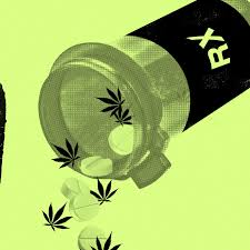 here s what we know about what weed does to teens tonic legal weed is the solution to our massive painkiller problem