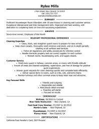 Resume Title Sample Examples Resume Hitecauto Us