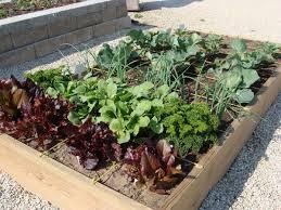 Fall Plants For Vegetable Garden by Hillermann Nursery U0026 Florist Seasonal Lawn And Garden Tips Plus