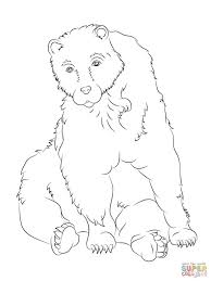 creative brown bears coloring pages animal brown bears