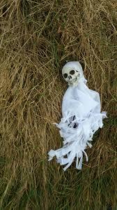 spirit halloween job application free images grass white hay flower statue halloween death