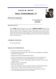 Cctv Experience Resume Senior It Project Manager Ceo Cio