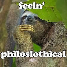 Funny Sloths Memes - c64 jpg 600 600 spirit animal pinterest sloth animal and